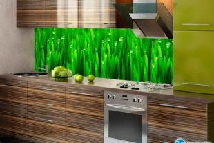 Фартук на кухню из стекла Фото